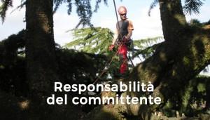 Responsabilità del committente